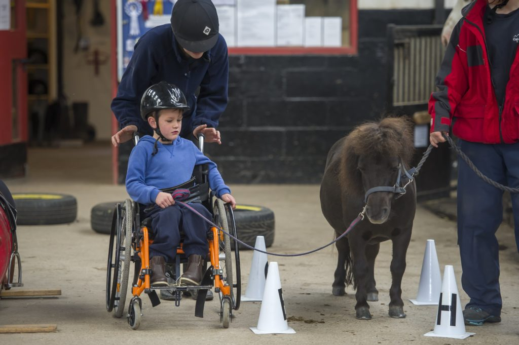 Young wheelchair user leading a pony on a walk